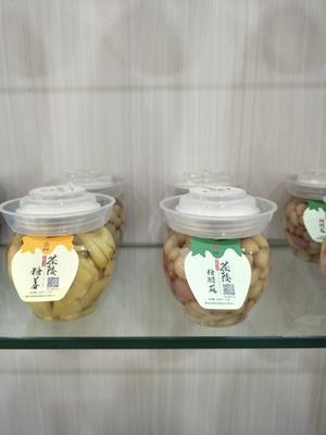 湖南省株洲市茶陵县小瓶盐姜 瓶装 6-12个月