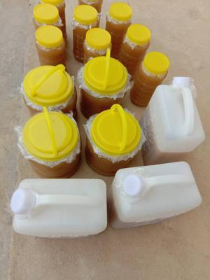 广东省江门市新会区土蜂蜜 塑料瓶装 90%以上 2年以上