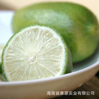 海南省琼海市琼海市香水柠檬 2 - 2.6两