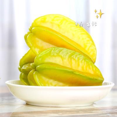 福建省漳州市平和县甜杨桃 4 - 5两