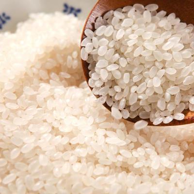 黑龙江省佳木斯市郊区富硒大米 绿色食品 中稻 一等品