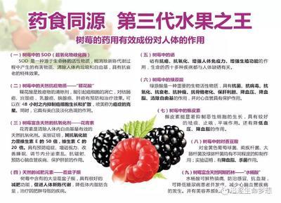 河南省新乡市封丘县双季红树莓 鲜果