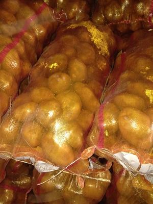 这是一张关于陇薯10号 4两以上的产品图片