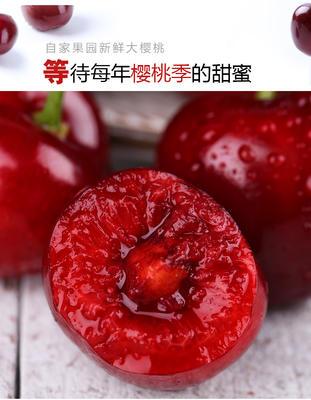 山东省日照市五莲县红灯樱桃 20-22mm 15-18g