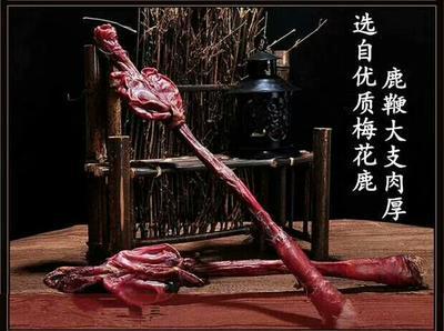 湖北省武汉市东西湖区鹿鞭