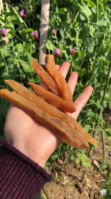 广西壮族自治区桂林市七星区红薯干 条状 袋装 半年