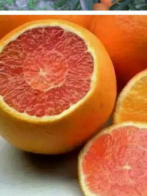 这是一张关于血橙 55 - 60mm 4两以下的产品图片