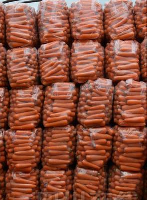 广西壮族自治区南宁市宾阳县黄胡萝卜 15cm以上 3两以上 3~4cm