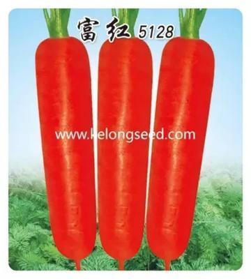 这是一张关于三红胡萝卜种子 的产品图片
