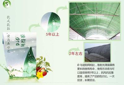 河南省郑州市惠济区绿白膜