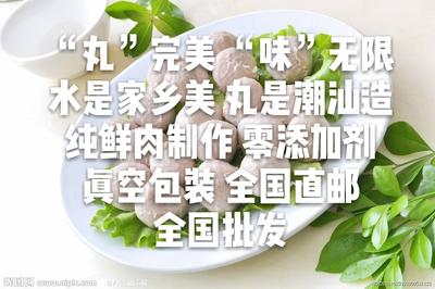 广东省潮州市潮安区猪肉丸