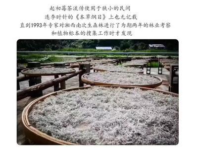 湖南省湘西土家族苗族自治州永顺县新工艺白茶 袋装 特级