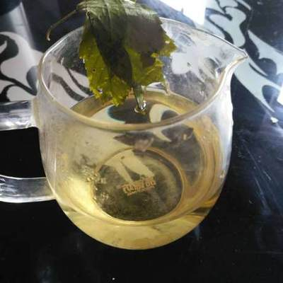 广西壮族自治区来宾市象州县甜茶