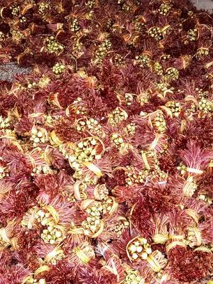 四川省达州市大竹县红油香椿芽 露天种植 箱装 一级