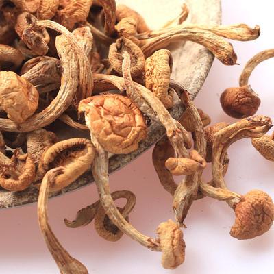 黑龙江省大兴安岭地区大兴安岭地区加格达奇区干滑子蘑 散装 1年以上