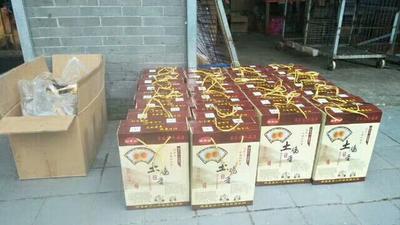 安徽省宣城市绩溪县京山放养土鸡 新鲜