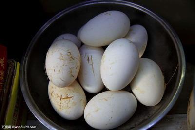 江苏省南京市江宁区鲜鹅蛋 食用 散装