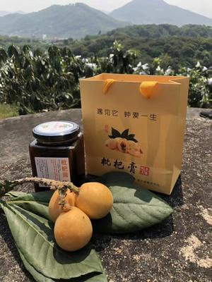 湖南省娄底市双峰县枇杷膏制品 6-12个月