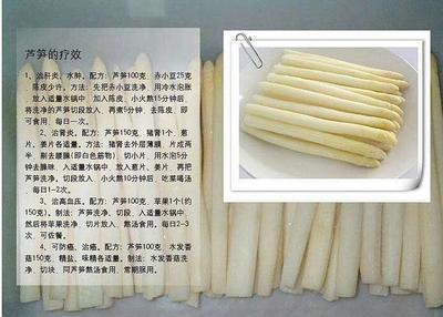 山东省菏泽市曹县白芦笋 16cm以上 5mm以上