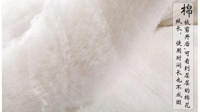 新疆维吾尔自治区阿克苏地区温宿县新疆棉花