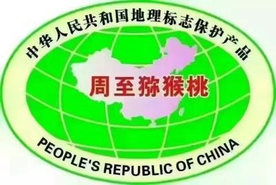 陕西省西安市周至县周至猕猴桃 80~100克