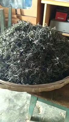 云南省普洱市景谷傣族彝族自治县镇沅野生古树茶 散装 特级