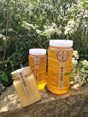 贵州省黔西南布依族苗族自治州兴义市土蜂蜜 塑料瓶装 98% 2年以上