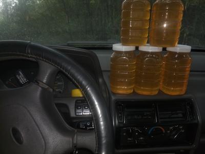 广西壮族自治区来宾市象州县土蜂蜜 塑料瓶装 95%以上 2年以上