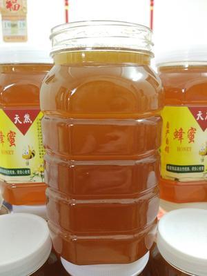 广东省深圳市龙岗区百花蜜 塑料瓶装 100% 2年