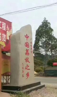 广西壮族自治区贵港市桂平市荔枝蜜 塑料瓶装 100% 2年以上