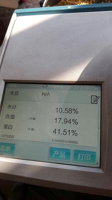 吉林省延边朝鲜族自治州敦化市东北黑龙江大豆 生大豆 2等品