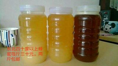 黑龙江省牡丹江市东宁县百花蜜 塑料瓶装 100% 2年以上