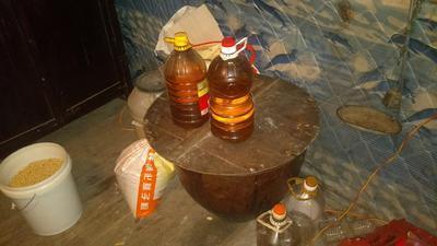 湖南省怀化市通道侗族自治县茶叶籽油
