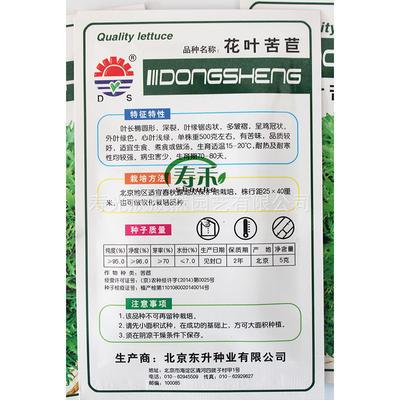广东省广州市萝岗区苦苣种子