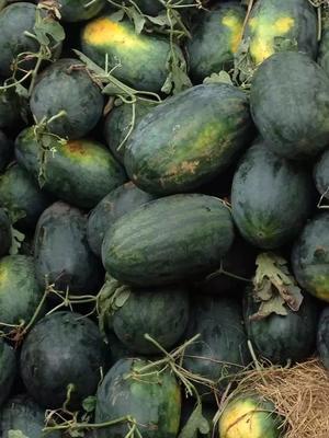 这是一张关于麒麟西瓜 有籽 1茬 8成熟 6斤打底的产品图片