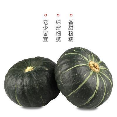 陕西省榆林市定边县板栗南瓜 2~4斤 扁圆形
