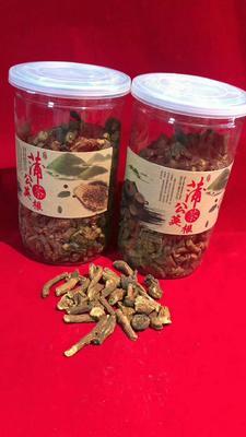 吉林省白山市抚松县蒲公英茶 罐装 一级