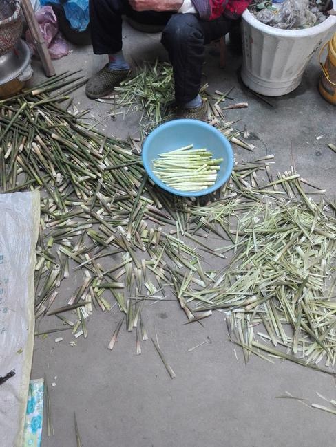 小竹笋 13~17cm 鲜笋