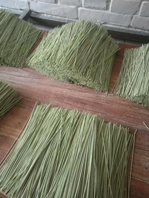 山东省聊城市东昌府区脱水菠菜 6-12个月