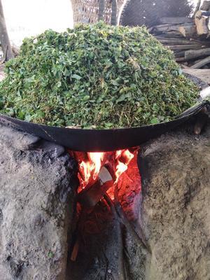 贵州省遵义市桐梓县熟料猪肉 160斤以上