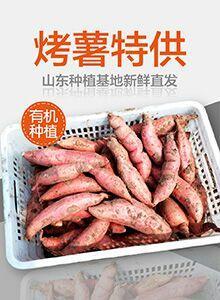 山东省济南市章丘市烟薯25 红皮 3两以上