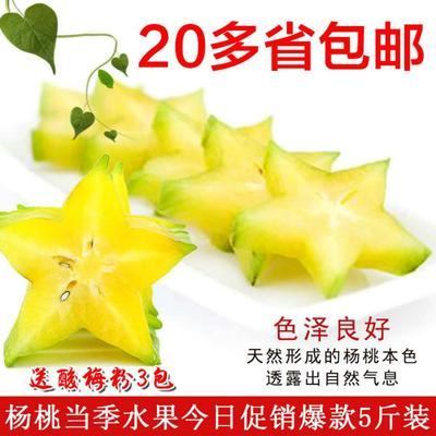 福建省漳州市南靖县香蜜杨桃 3 - 4两
