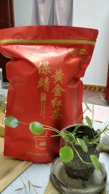 湖南省湘西土家族苗族自治州吉首市湘西保靖黄金红茶 袋装 一级