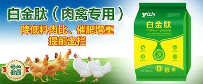 河南省郑州市金水区肉鸡催肥促生长添加剂