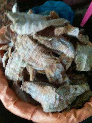 湖南省郴州市资兴市野生淡盐竹笋 散装 1年以上