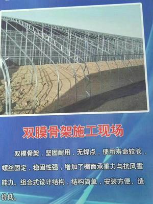 河北省沧州市南皮县C型钢温室大棚