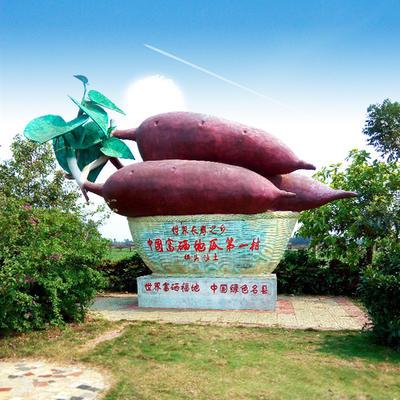 海南省海口市龙华区桥头地瓜 红皮 1~3两