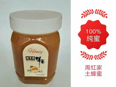 湖南省长沙市雨花区土蜂蜜 塑料瓶装 100% 2年以上