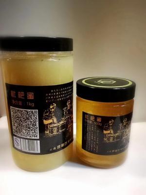 云南省红河哈尼族彝族自治州弥勒市枇杷蜜 塑料瓶装 98% 2年