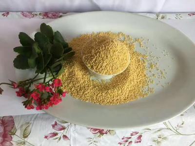 甘肃省酒泉市肃州区黄金米